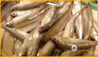 рецепты по жарке рыбы