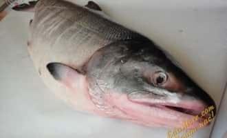 филе лосося, филе лосося в духовке, филе лосося рецепты