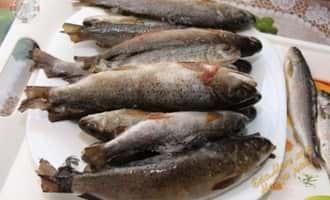 рыбалка на хариуса и ленка, фото ленка рыбы