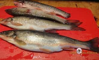 как готовить рыбу, как вкусно пожарить рыбу, жарим рыбу, рыба для жарки, как вкусно приготовить рыбу, жарить рыбу рецепт, kak-zharit-rybu
