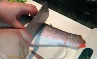 как приготовить вкусную уху, как приготовить уху из рыбы, как приготовить свиные уши