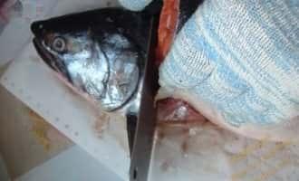 рыба кижуч приготовление, кижуч рыба рецепты +в духовке