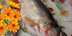 корюшка рыба, корюшка рыба википедия, рыба корюшка фото, рыба корюшка цена, рыба корюшка цена, корюшка рыба цена +за 1 кг, корюшка семейство рыб, корюшка морская рыба, корюшка рыба рецепты, рыба корюшка где водится, рыба корюшка речная, korjushka-ryba, korjushka ryba vikipedija, ryba-korjushka-foto, ryba korjushka cena, ryba korjushka cena, korjushka ryba cena +za 1 kg, korjushka semejstvo ryb, korjushka morskaja ryba, korjushka ryba recepty, ryba korjushka gde voditsja, ryba-korjushka-rechnaja