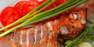 диетические блюда из рыбы, как приготовить красный окунь, как приготовить морского окуня в духовке, что приготовить из морского окуня, блюда из окуня, блюда из морского окуня в духовке, блюда из морского окуня