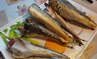 бычок рыба фото речной, рыба бычок фото морской