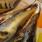 Бычок рыба фото и видео от Petr de Cril'on & SonyKpK