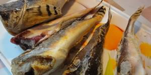 бычок рыба, рыба бычок фото, рыба бычок речной, морской бычок рыба, как приготовить бычки рыбу, рыба бычок +как готовить, бычок рыба фото речной, рыба бычок фото морской, купить рыбу бычок, рыба похожая +на бычка, рыба бычок рецепты, bychok-ryba, ryba-bychok-foto, ryba-bychok-rechnoj, morskoj-bychok-ryba, kak-prigotovit-bychki-rybu, ryba-bychok-kak-gotovit, bychok-ryba-foto-rechnoj, ryba-bychok-foto-morskoj, kupit-rybu-bychok, ryba-pohozhaja-na-bychka, ryba-bychok-recepty