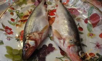 корюшка рыба, корюшка рыба википедия, рыба корюшка фото,  korjushka ryba vikipedija, ryba-korjushka-foto,