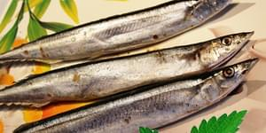 сайра натуральная, вкусная сайра, сайра тихоокеанская, сайра рыба, сайра тихоокеанская натуральная, sajra-naturalnaja, vkusnaja-sajra, sajra-tihookeanskaja, sajra-ryba, sajra-tihookeanskaja-naturalnaja