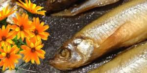 сушеная рыба в духовке рецепт
