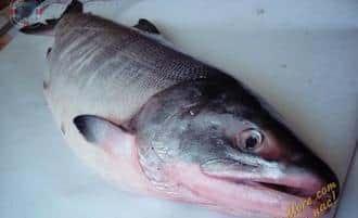 Как солить лосося в домашних условиях