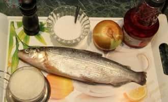 фото рыба сига