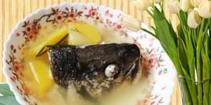 кета, уха из лосося блюда из красной рыбы, рыба кета, блюда из красной рыбы, рецепты рыбы, блюда из лосося, рецепт рыбы, красная рыба рецепт, блюда из рыбы кета, кета рыба рецепты, горячие блюда из рыбы, блюда с рыбой, вкусные блюда из рыбы,