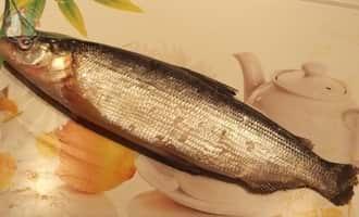 приготовление сига, очень вкусная рыба, вкусная речная рыба, какая рыба самая вкусная